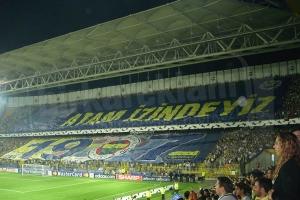 Fenerbahçe Vinil Germe